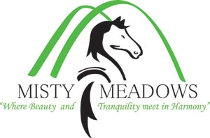 Misty Meadows Equestrian Centre